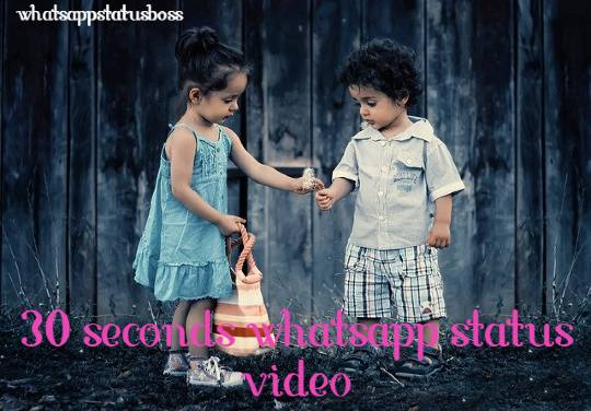 30 2Bseconds 2Bwhatsapp 2Bstatus 2Bvideo 2Bdownload